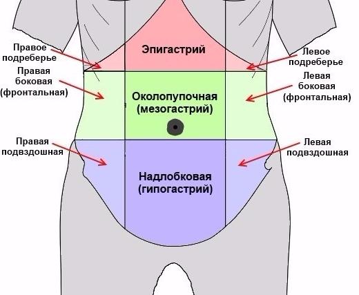 эпигастрий