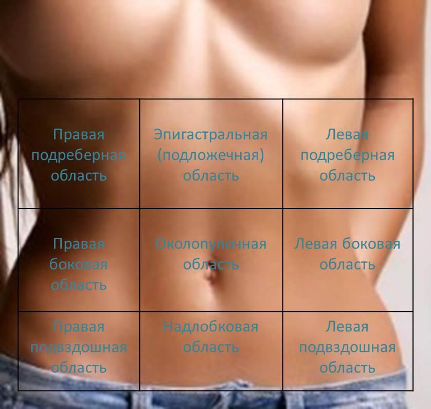 верхний квадрант брюшной полости