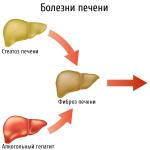 Каким болезням подвержена печень человека